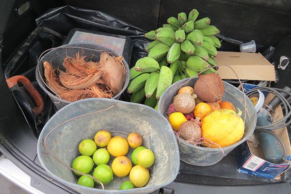 Food Donation Program